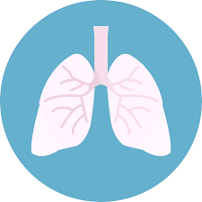 Treating Respiratory Conditions With Traditional Chinese Medicine