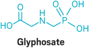 Acupuncture and Glyphosate chemical makeup