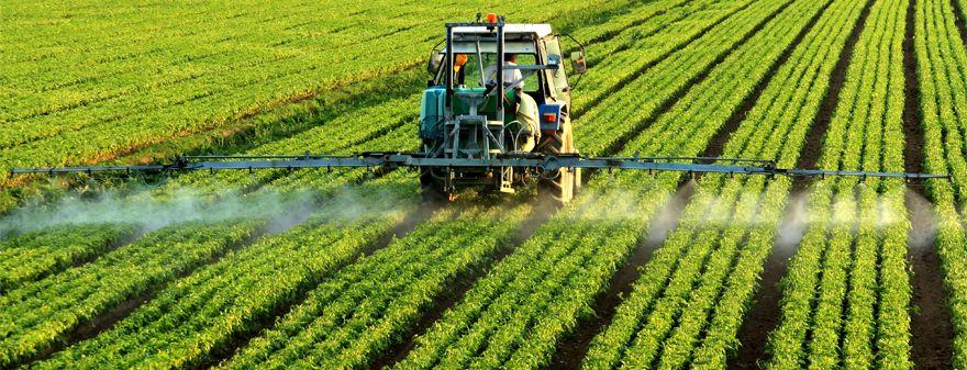 Glyphosate, The Most Pervasive Toxin